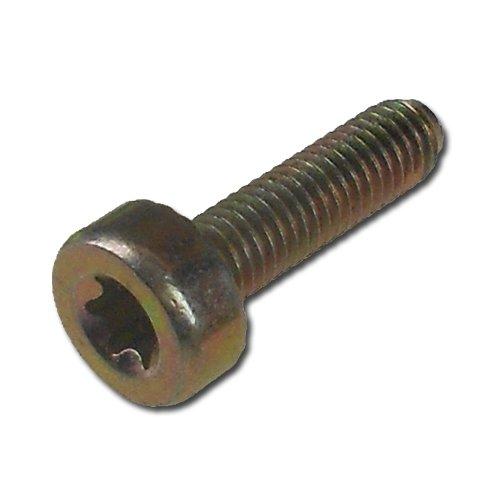 Hyway Spline Screw T27 - M5 x 18 Replaces Stihl 9022-341-0980