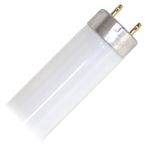 Bulbrite 776003 18W LED T8 4000K 4 Bi-Pin Direct Light Bulb
