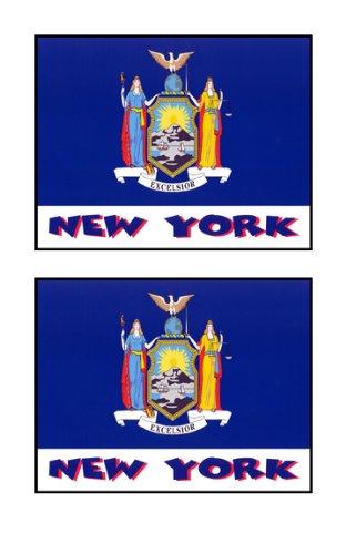 2 Souvenir New York State Flag Stickers Decal Laptop Phone Locker Toolbox Wall Stocking Stuffer